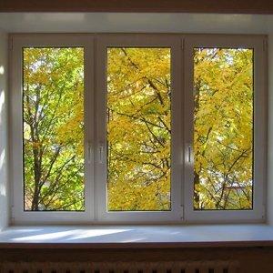 Окно зальное фото